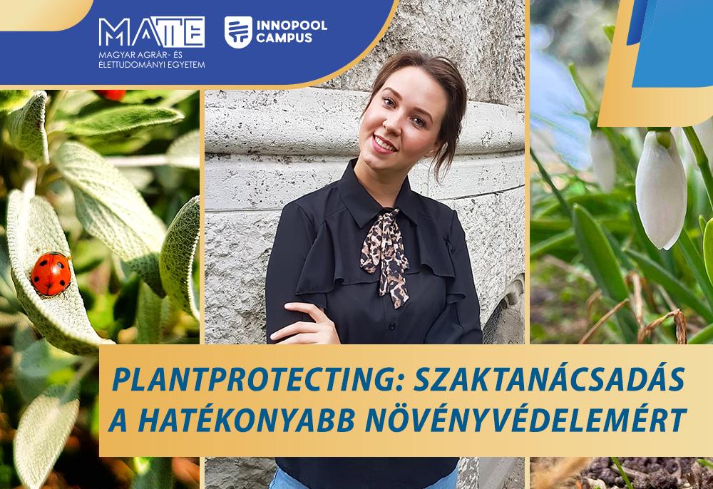 07-Plantprotecting-web